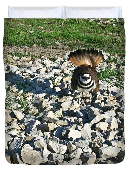 Killdeer 3 Duvet Cover by Douglas Barnett
