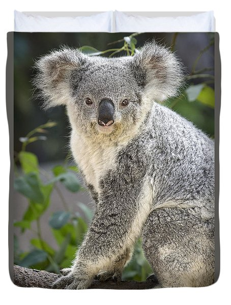Koala Female Portrait Duvet Cover by Jamie Pham