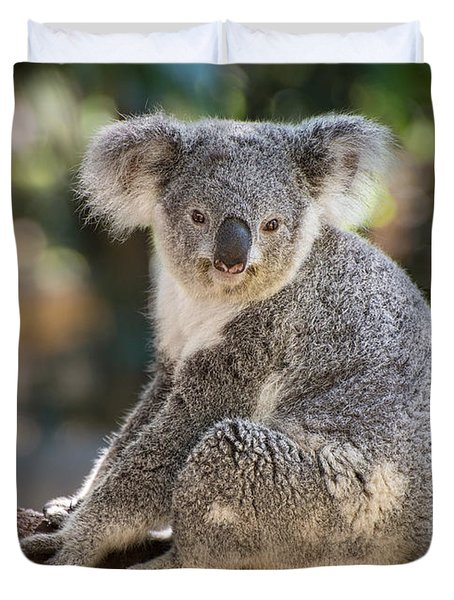 Koala In Tree Duvet Cover by Jamie Pham