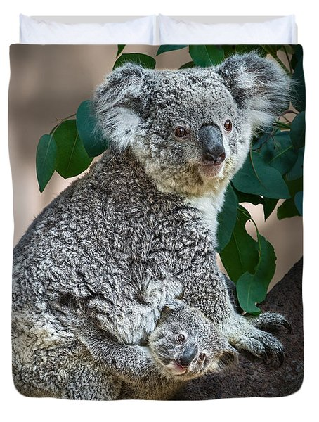 Koala Joey And Mom Duvet Cover by Jamie Pham