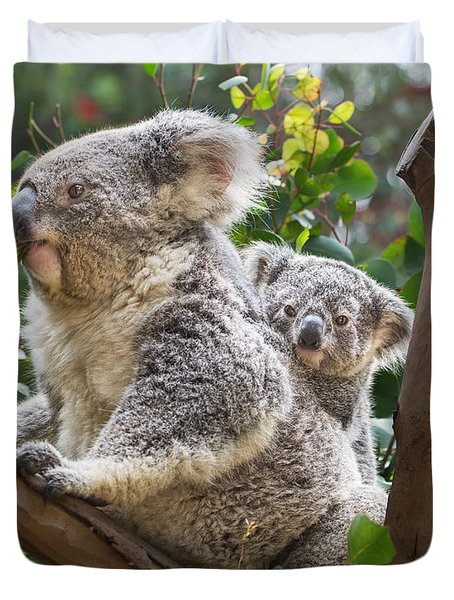 Koala Joey On Mom Duvet Cover by Jamie Pham