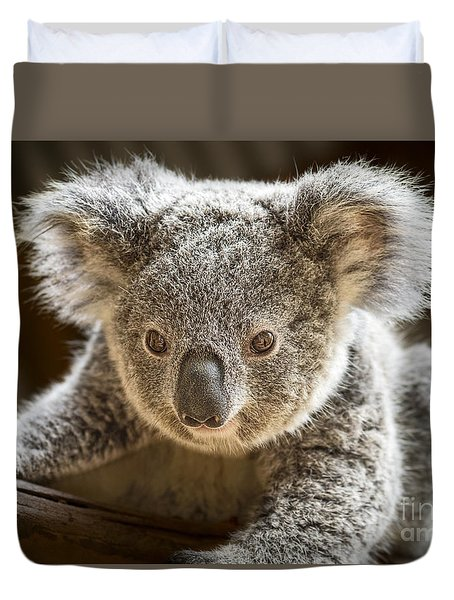 Koala Kid Duvet Cover by Jamie Pham
