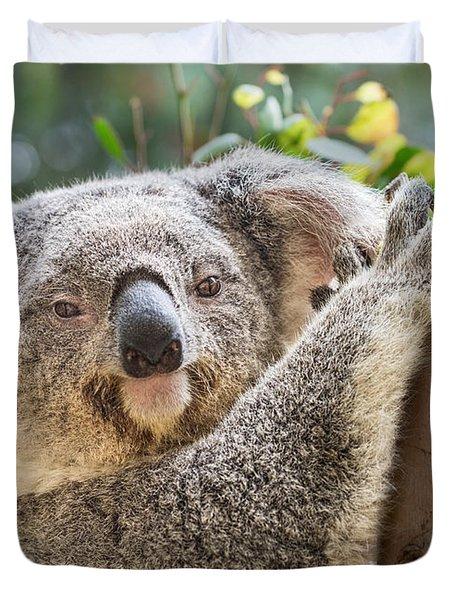 Koala On Tree Duvet Cover by Jamie Pham