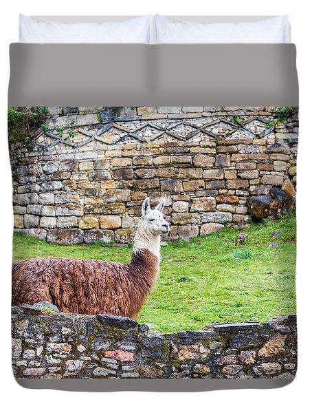 Kuelap Ruins And Llama Duvet Cover by Jess Kraft