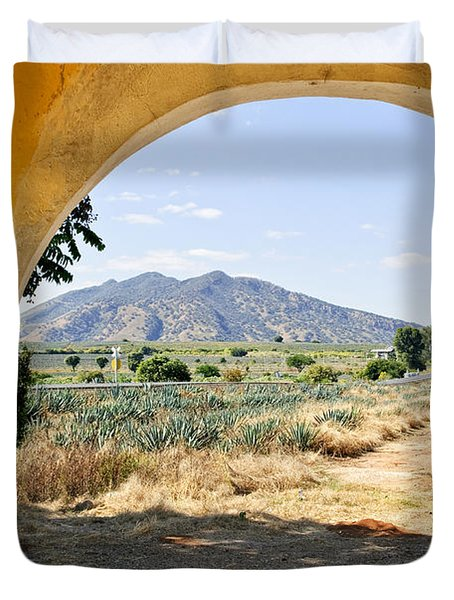 Landscape with agave cactus field in Mexico Duvet Cover by Elena Elisseeva