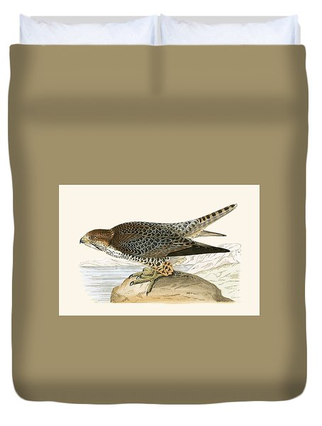 Lanner Falcon Duvet Cover by English School