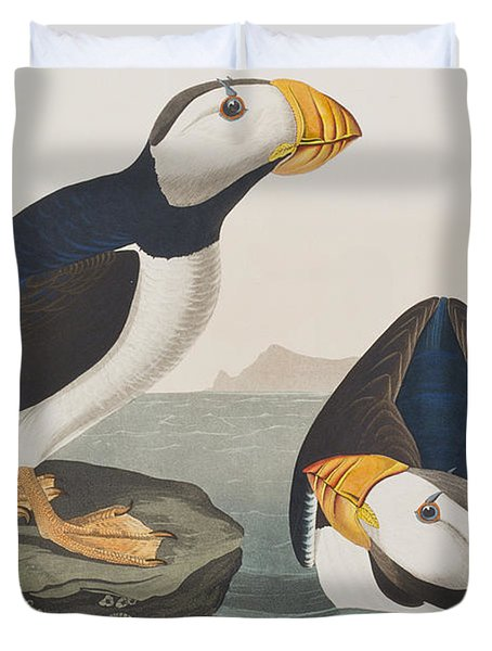 Large Billed Puffin Duvet Cover by John James Audubon