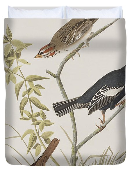 Lark Finch Prairie Finch Brown Song Sparrow Duvet Cover by John James Audubon