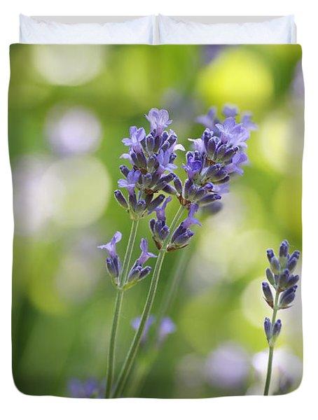 Lavender Garden Duvet Cover by Frank Tschakert