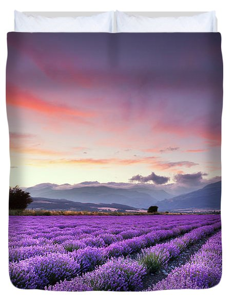 Lavender Season Duvet Cover by Evgeni Dinev