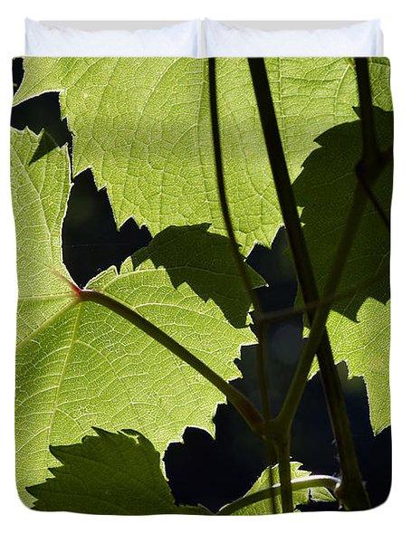 Leaves Of Wine Grape Duvet Cover by Michal Boubin