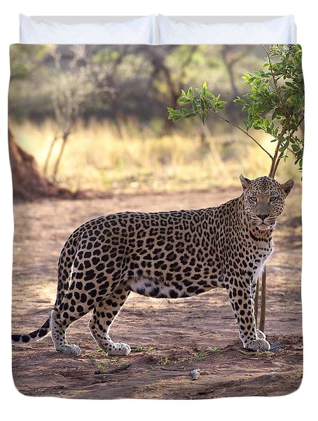 Leopard Duvet Cover by Keith Levit
