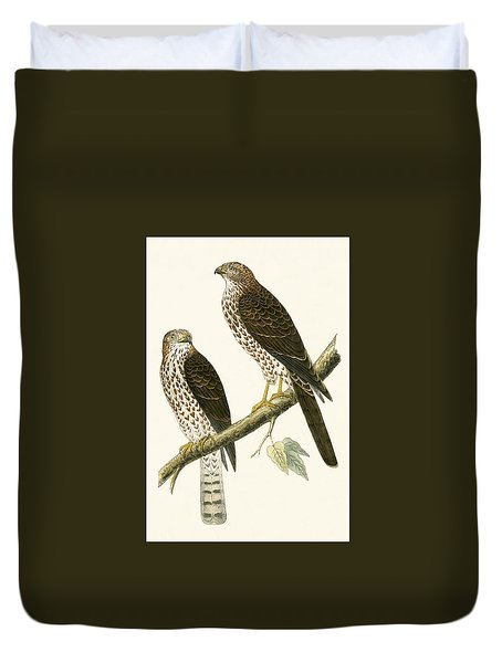 Levant Sparrow Hawk Duvet Cover by English School