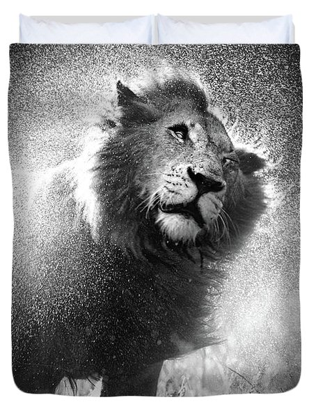 Lion Shaking Off Water Duvet Cover by Johan Swanepoel