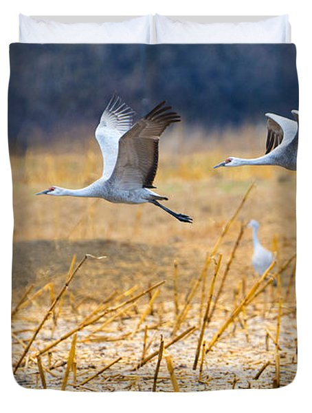 Low Level Flyby Duvet Cover by Mike Dawson