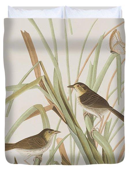 Macgillivray's Finch  Duvet Cover by John James Audubon