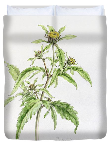 Marigold Duvet Cover by WJ Linton
