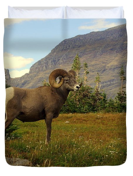 Master Of His Domain Duvet Cover by Marty Koch