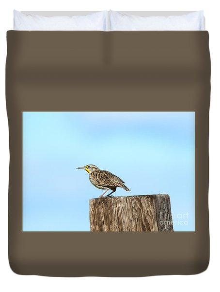 Meadowlark Roost Duvet Cover by Mike Dawson