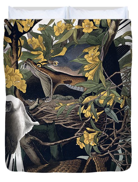 Mocking Birds And Rattlesnake Duvet Cover by John James Audubon