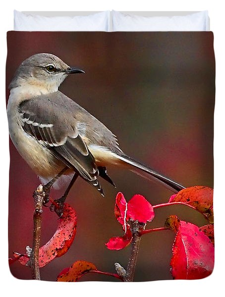 Mockingbird On Red Duvet Cover by William Jobes