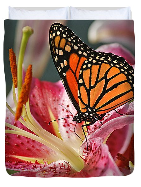 Monarch On A Stargazer Lily Duvet Cover by Cindi Ressler