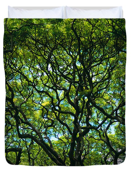 Monkeypod Canopy Duvet Cover by Peter French - Printscapes