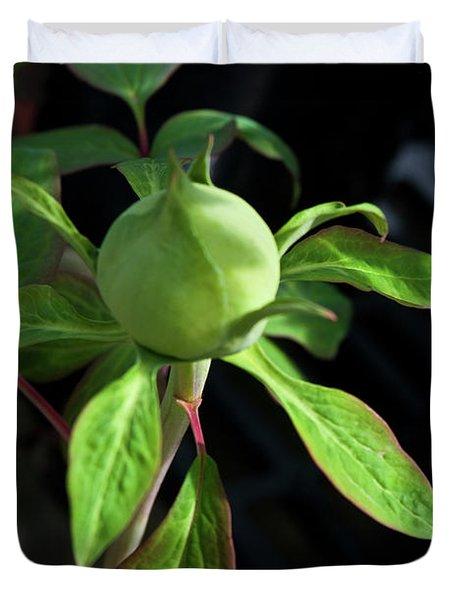 Monstrous Plant Bud Duvet Cover by Douglas Barnett