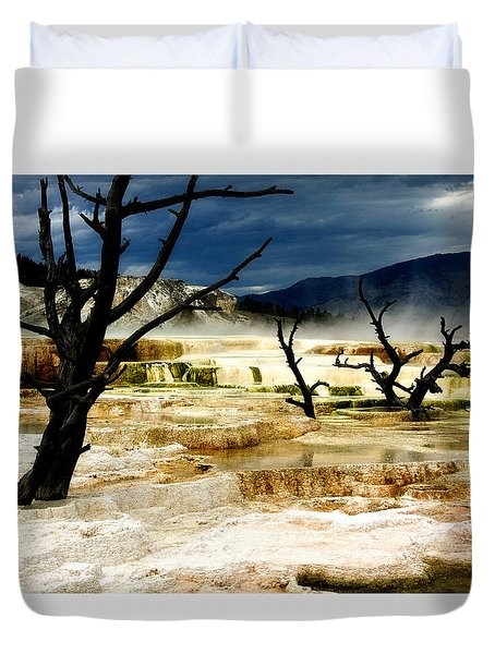 Moody Minerva Duvet Cover by Lana Trussell
