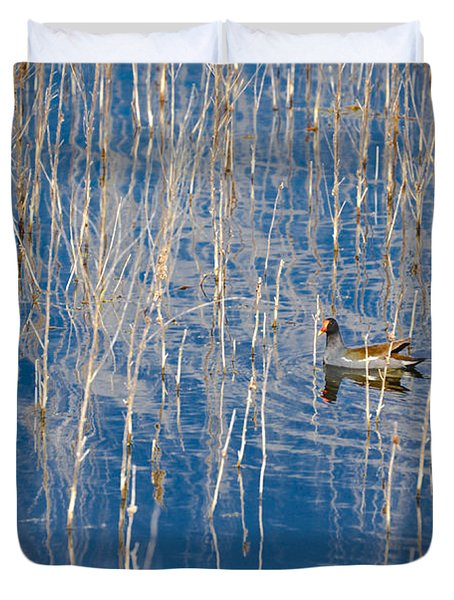 Moorhen In The Reeds Duvet Cover by Carolyn Marshall