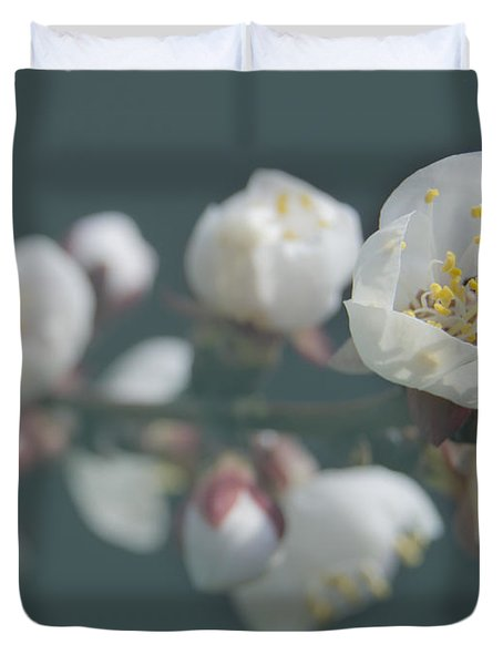 Moorpark Apricot B 4212 Duvet Cover by Michael Peychich