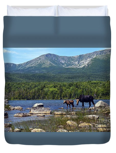 Moose Baxter State Park Maine 2 Duvet Cover by Glenn Gordon