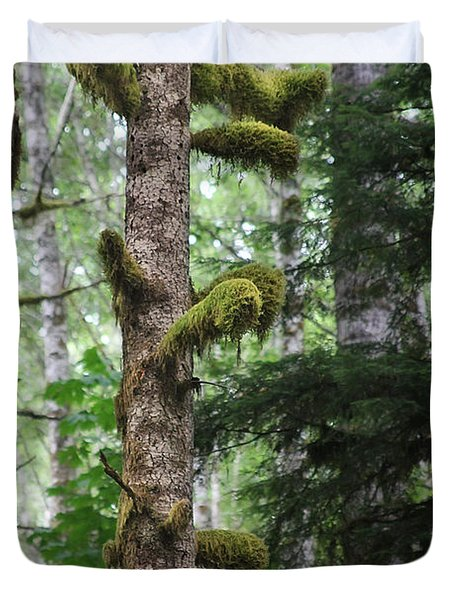 Moss-draped trees on Tiger Mountain WT USA Duvet Cover by Christine Till