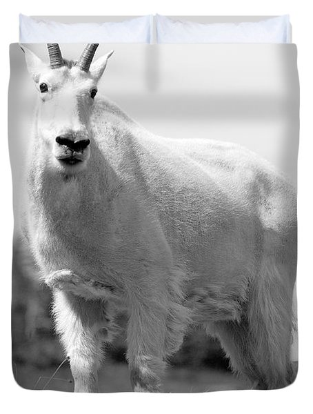 Mountain Goat Duvet Cover by Sebastian Musial