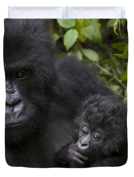 Mountain Gorilla Mother Holding 3 Month Duvet Cover by Suzi Eszterhas
