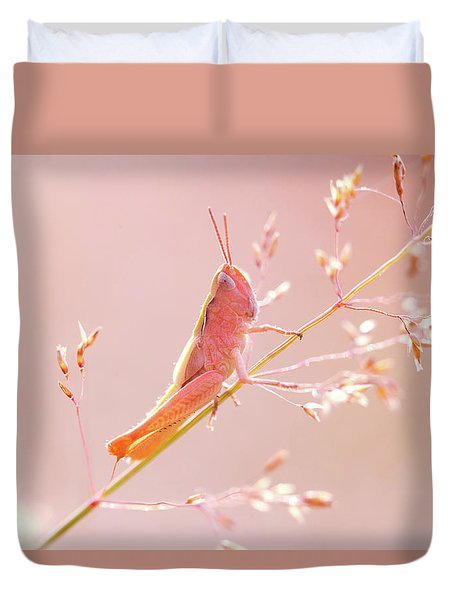 Mr Pink - Pink Grassshopper Duvet Cover by Roeselien Raimond