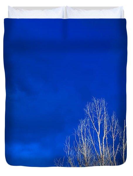 Night Sky Duvet Cover by Steve Gadomski