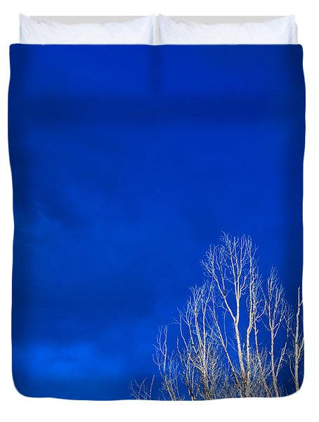 Night Sky Duvet Cover by Steve Gadomski