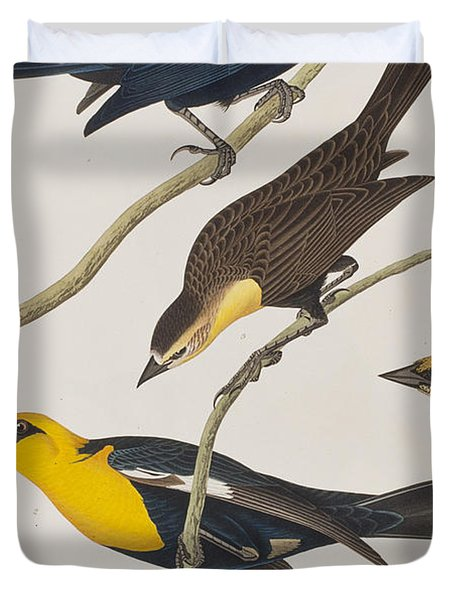 Nuttall's Starling Yellow-headed Troopial Bullock's Oriole Duvet Cover by John James Audubon