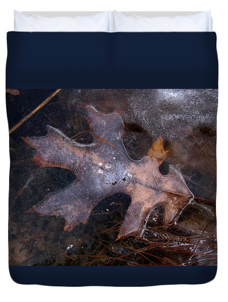 Oak Preservation Duvet Cover by Adam Long