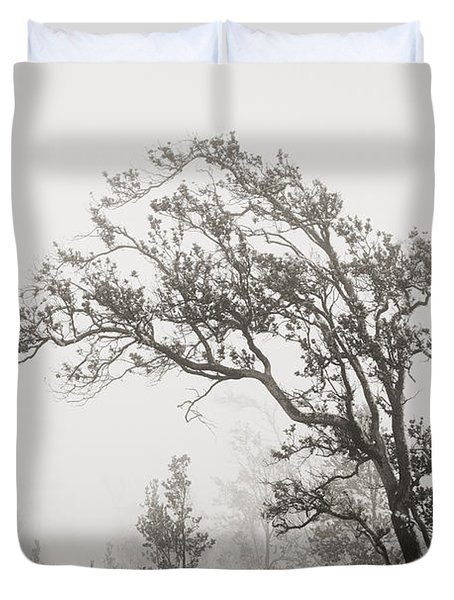 Ohia Lehua Tree Duvet Cover by Greg Vaughn - Printscapes
