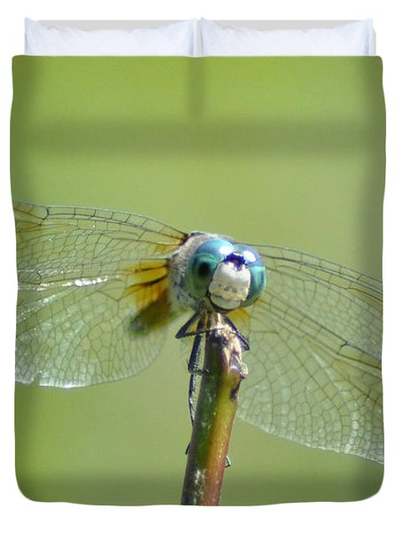 Old Blue Eyes - Blue Dragonfly Duvet Cover by Bill Cannon