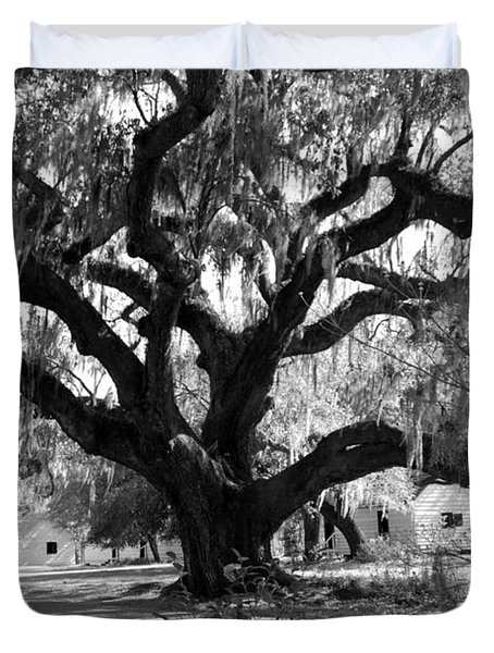 Old Plantation Tree Duvet Cover by Melody Jones