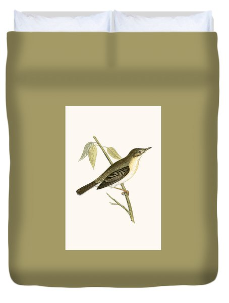 Olivaceous Warbler Duvet Cover by English School