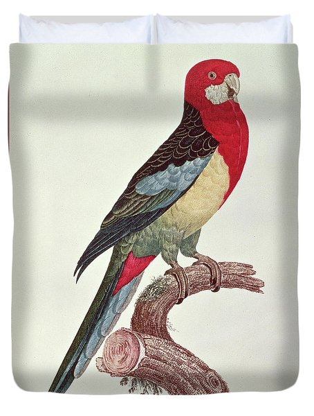 Omnicolored Parakeet Duvet Cover by Jacques Barraband