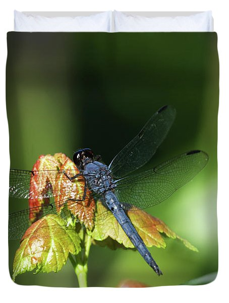 On A Leaf Duvet Cover by Karol Livote