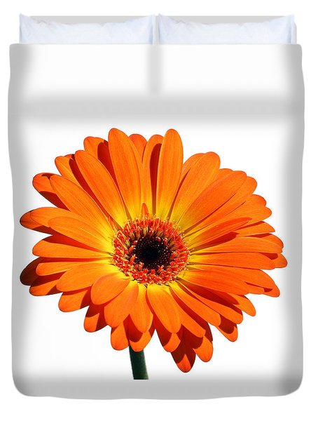 Orange Gerber Daisy Perfection Duvet Cover by Juergen Roth