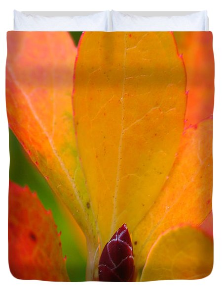 Orange Leaves Duvet Cover by Juergen Roth