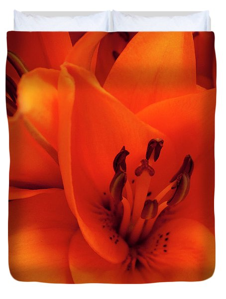 Orange Lily Duvet Cover by David Patterson