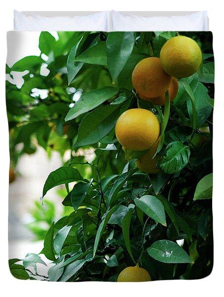 Orange Tree Duvet Cover by Lorraine Devon Wilke